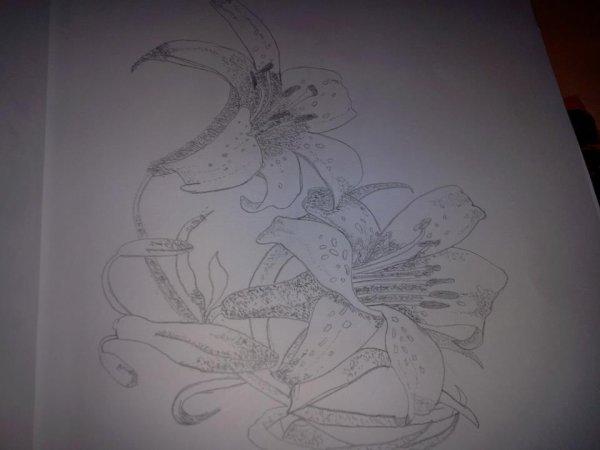 Fleur de lys dessin blog de madmoizell du59 - Dessin fleur de lys royale ...